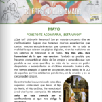 Educación-Transmisión de la Fe (Mayo'20)