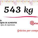 Recogida de alimentos ¡543 kg!